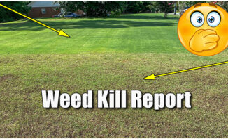 killing crabgrass in bermuda lawn