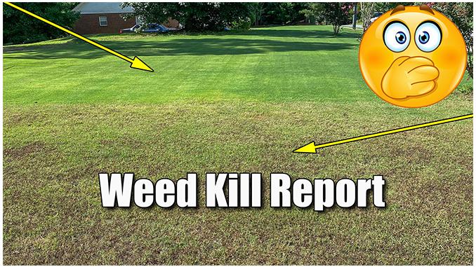 killing crabgrass in bermuda lawn