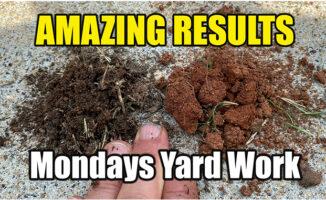 lawn soil treatments