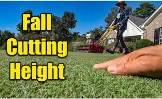 fall lawn cutting height