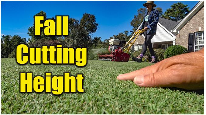 fall lawn cutting height