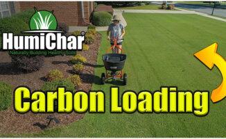 humichar lawn biochar