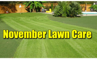 november lawn care