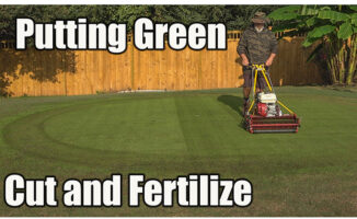 reel mowing putting greens