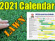 bermuda lawn calendar