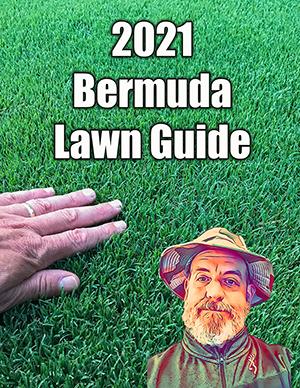 bermuda lawn guide