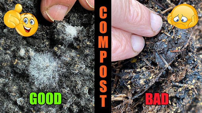 How to Make Organic Compost Pile