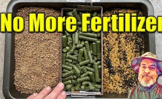 cheap organic fertilizer