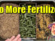cheap organic fertilizer