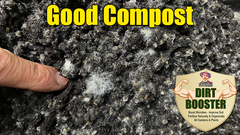 healthy organic compost pile