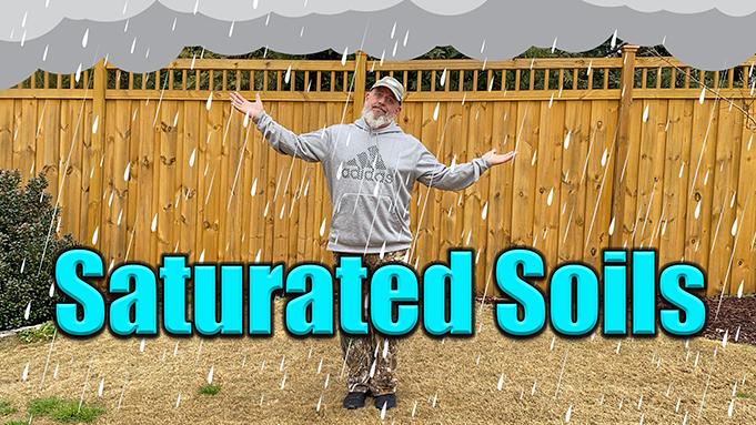 heavy rains lawn care