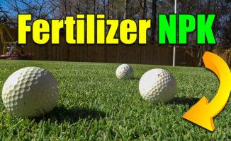 best lawn npk ratio