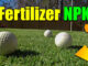 best lawn npk ratio