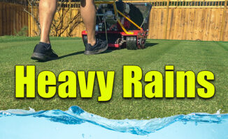 heavy rains lawn care