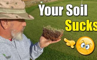 improve lawn soil spray supplements