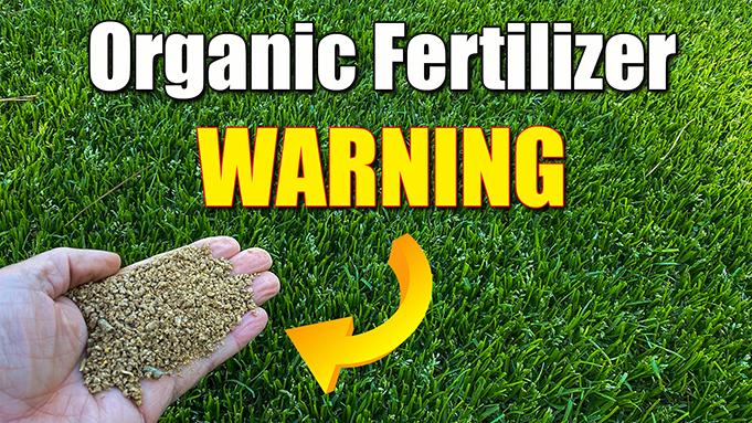 Understanding the Term Organic in Gardening