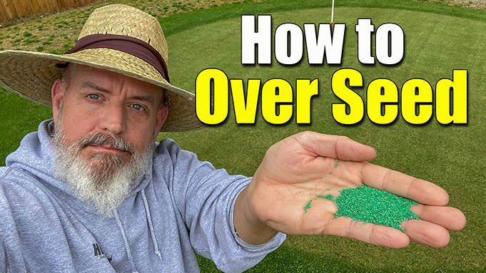 How to Overseed Your Lawn in the Spring
