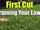 reel mowing bermuda first cut