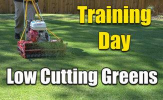 reel mowing low putting green