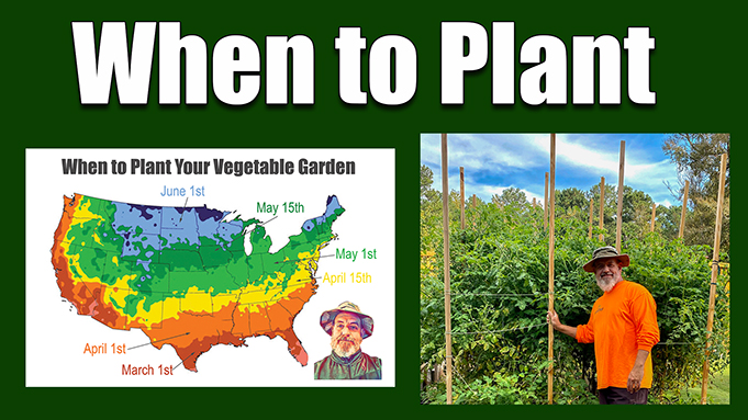 When to plant vegetable gardens