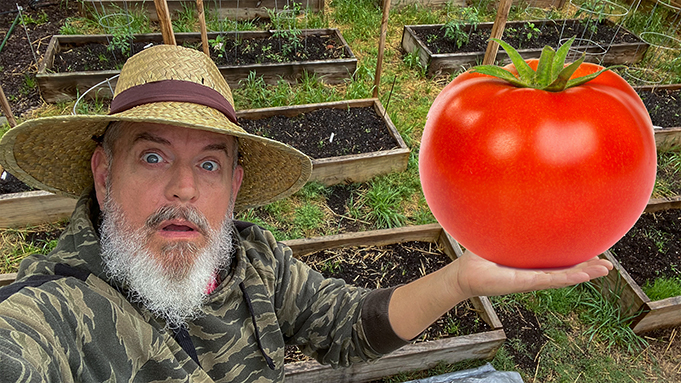 How to Grow Huge Vegetables and Tomatoes