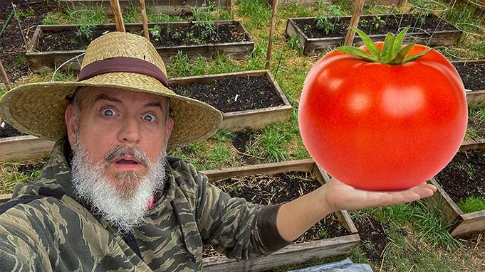 growing big vegetables naturally