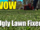 reel mowing fixed ugly lawn