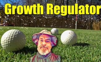 lawn growth regulator