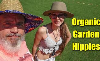 organic garden fertilizer and mulch