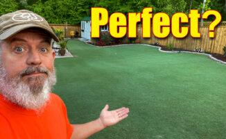 perfect bermuda lawn