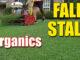 fall organic fertilizer