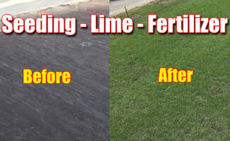 lawn lime ph seeding
