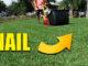 reel mower blade damage